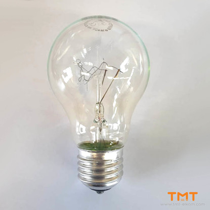 Picture of INCANDESCENT LAMP  100W E27 A55 240V ESI