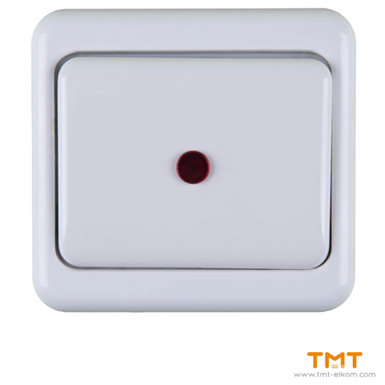 Picture of CONTROL WAY SWITCH-LIGHT EURO,N.KIROV